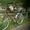 Новый женский велосипед, круизер #715979