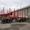 Новый прицеп-сортиментовоз АПС 854000 г/п 35, 5 тонн. #1660773