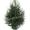 Живая елка с бесплатной доставкой #1670236