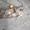 Ремонт бензобаков в СПБ. Любая сложность. - Изображение #2, Объявление #1702952