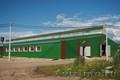 Строительство реконструкция оборудование сельскохозяйственных ферм и других живо