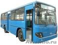 Автобусы Kia,Daewoo, Hyundai в Омске. - Изображение #3, Объявление #263177