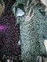 каракуль разных цветов: черный,  серый,  розовый,  зеленый ,  фиолетовый и золотой в