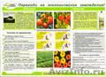 натуральное органическое удобрение биогумус и жидкая вытяжка гумистар - Изображение #2, Объявление #419357