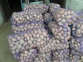 Картофель оптом,  9 руб/кг