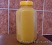 Мёд алтайский,  почтой!