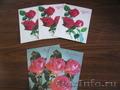 5 почтовых открыток