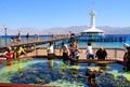 Яркий отдых на Красном море - Эйлат - Изображение #3, Объявление #1596411