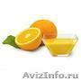 Предлагаем концентраты соков  и пюре из тропических фруктов., Объявление #1610669